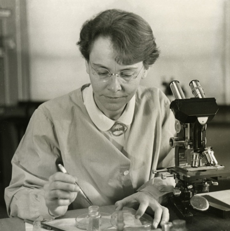 "Barbara McClintock. Source: ""Barbara McClintock (1902-1992)"" by Smithsonian Institution - Flickr: Barbara McClintock (1902-1992). Via Wikimedia Commons - http://commons.wikimedia.org/wiki/File:Barbara_McClintock_(1902-1992).jpg#mediaviewer/File:Barbara_McClintock_(1902-1992).jpg"