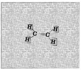 Plant Hormones: Ethylene (1/2)