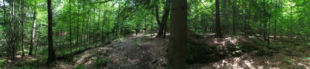 Nature walk. (4/6)