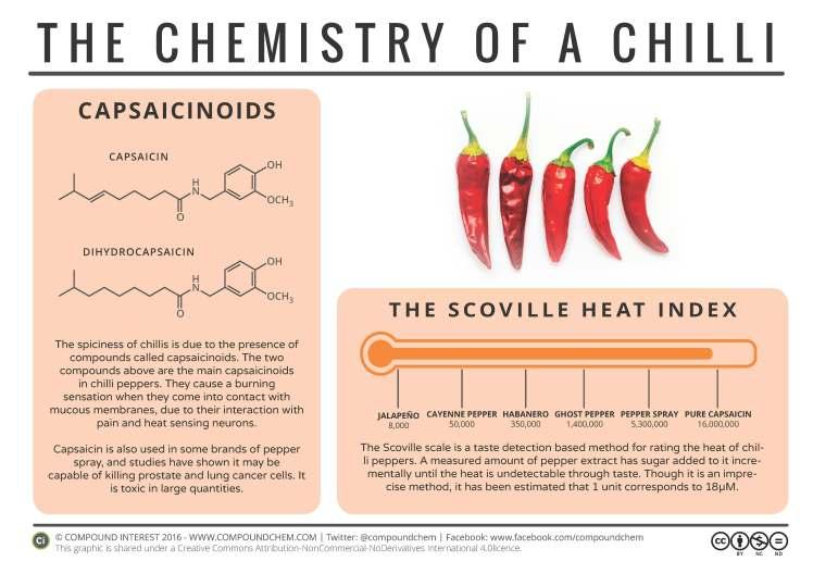 chilli-chemistry