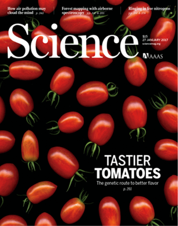 ScienceCoverTomatoes